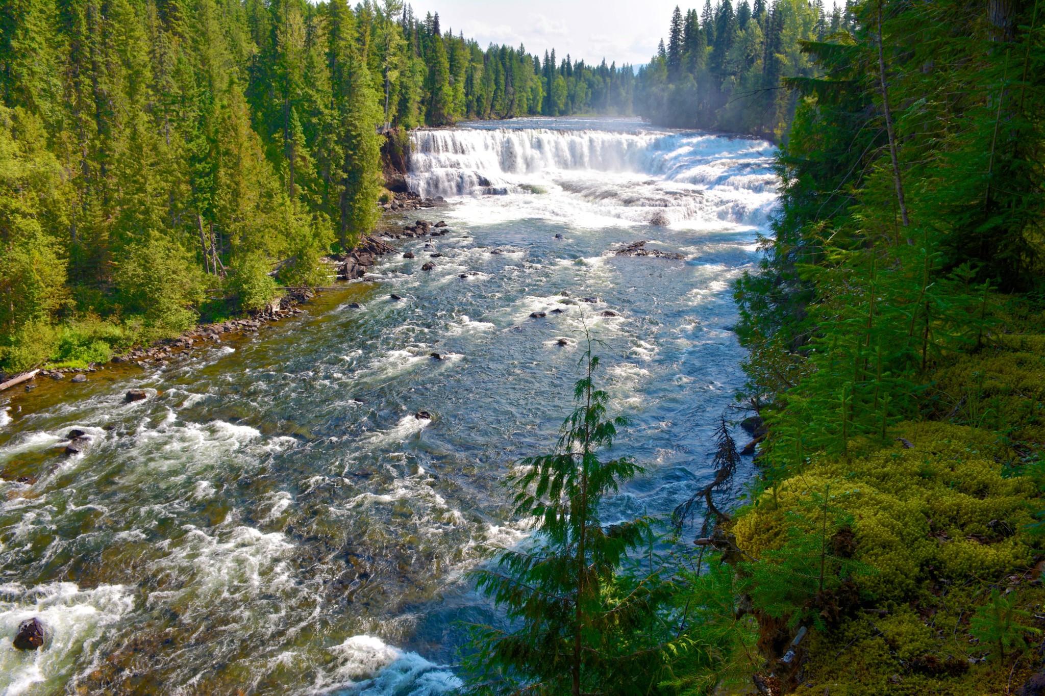 Dawson Falls im Wells Gray Nationalpark, BC, Kanada