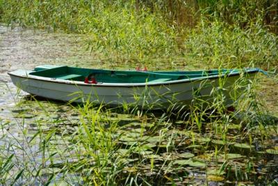Ruderboot auf einem See - Ed