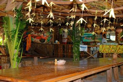 Loutier coco - Grand Anse - La Digue