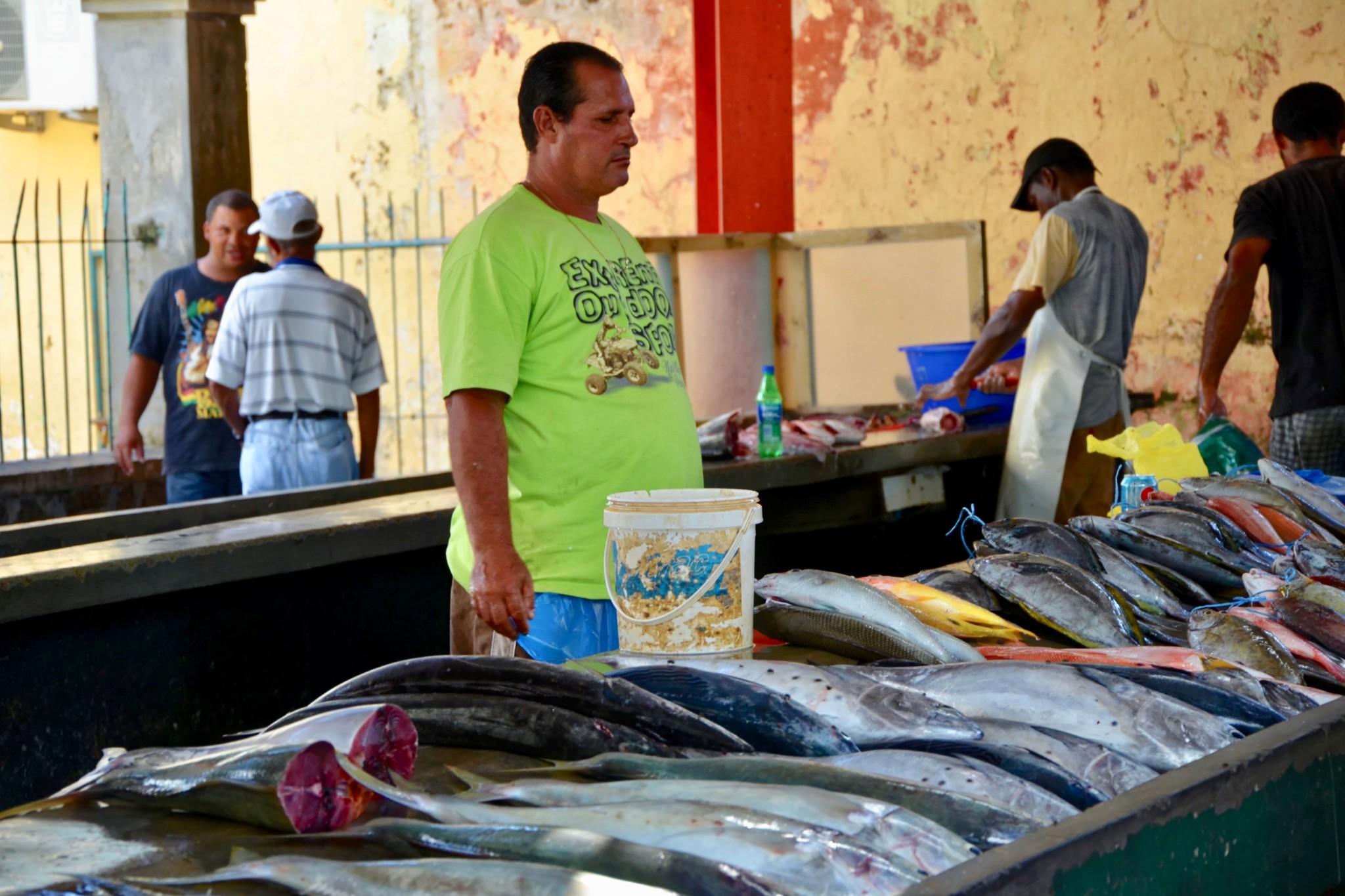 Am Markt - Viktoria - Mahe