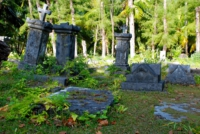 Friedhof - L Union Estate - La Digue