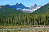 Mushroom Peak - Jasper NP