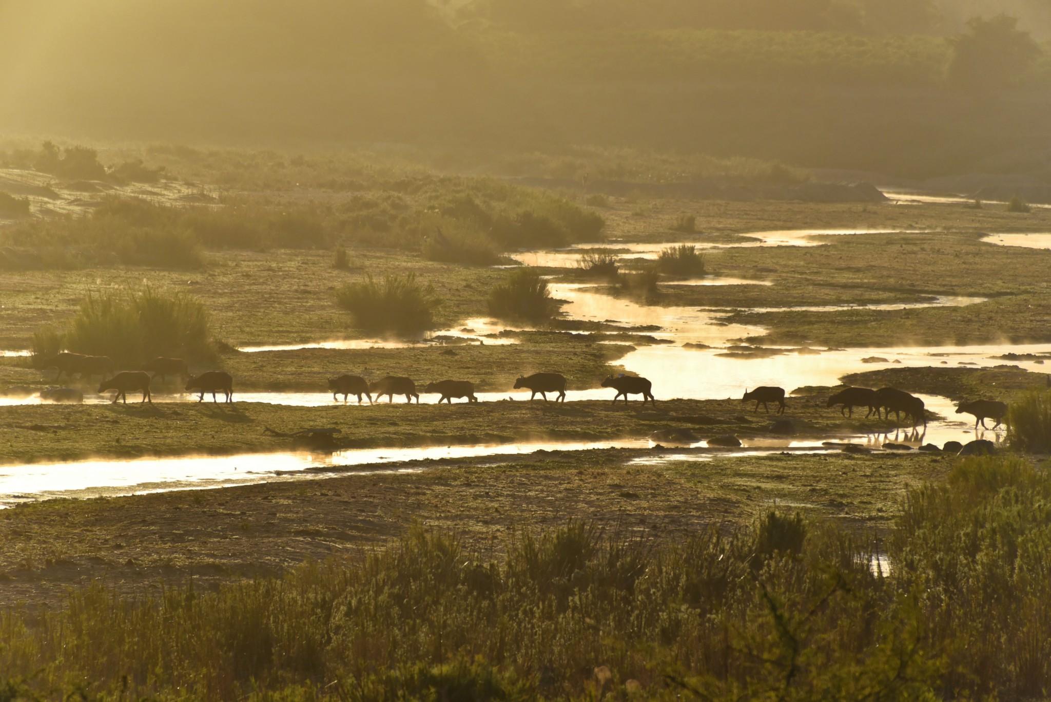 Komatiepoort - Crocodile River