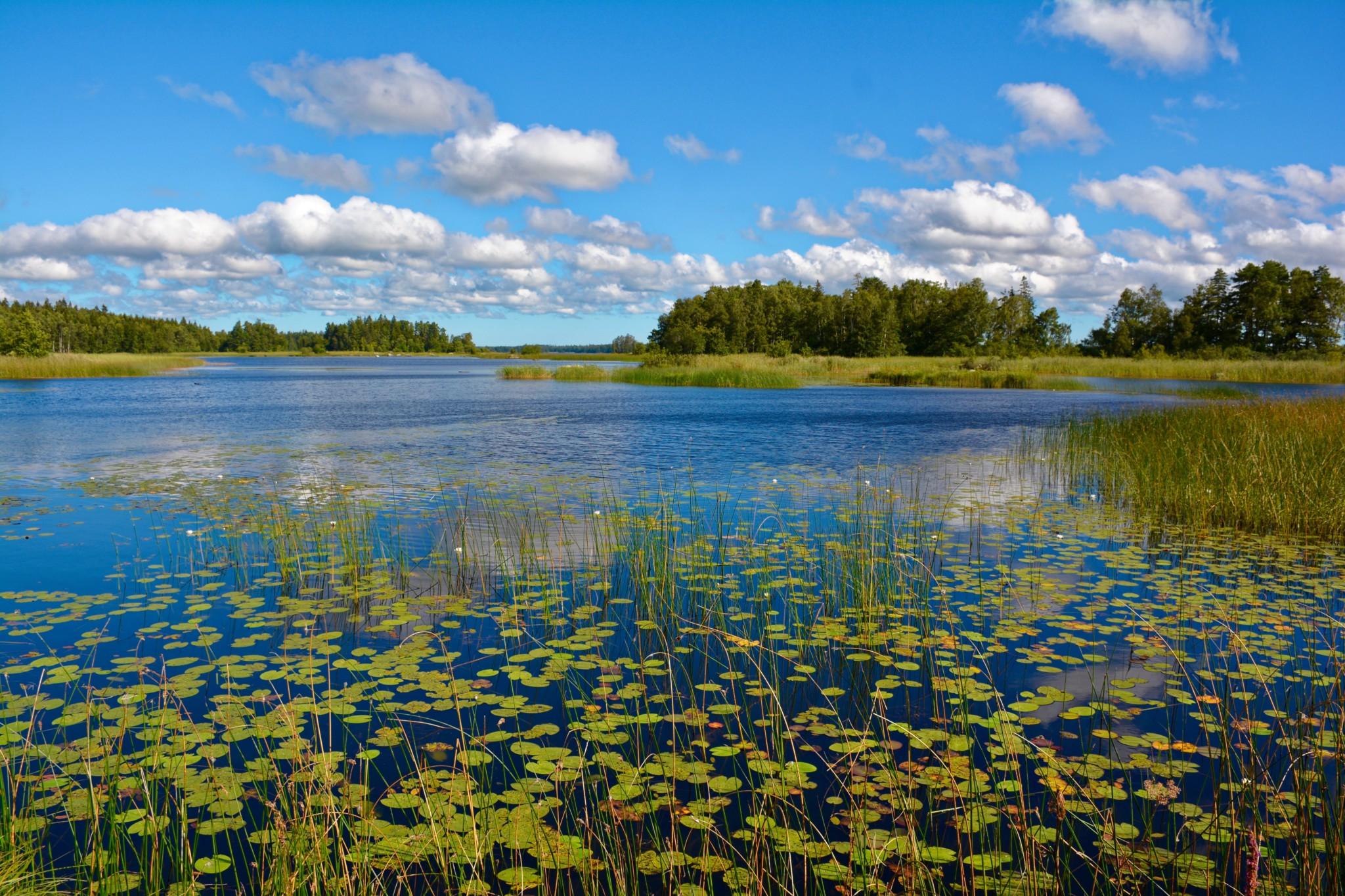 Blick über den Ivesjö See in Bromölla, Schweden