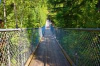 Hängebrücke - Cracy Creek Falls - Revelstoke