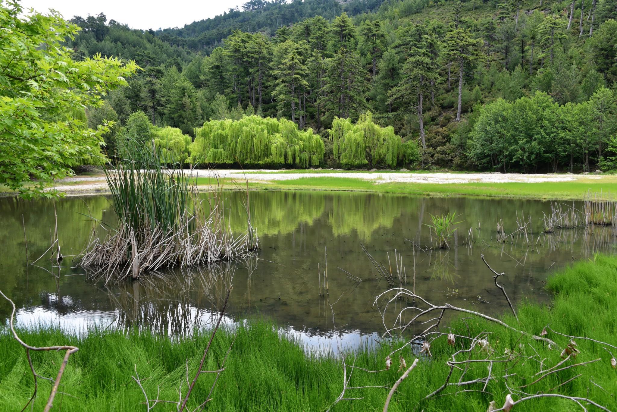 Maries Lake