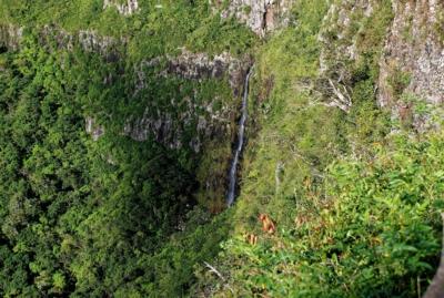 Wasserfall - Mauritius