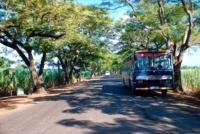 Strasse mit Bus