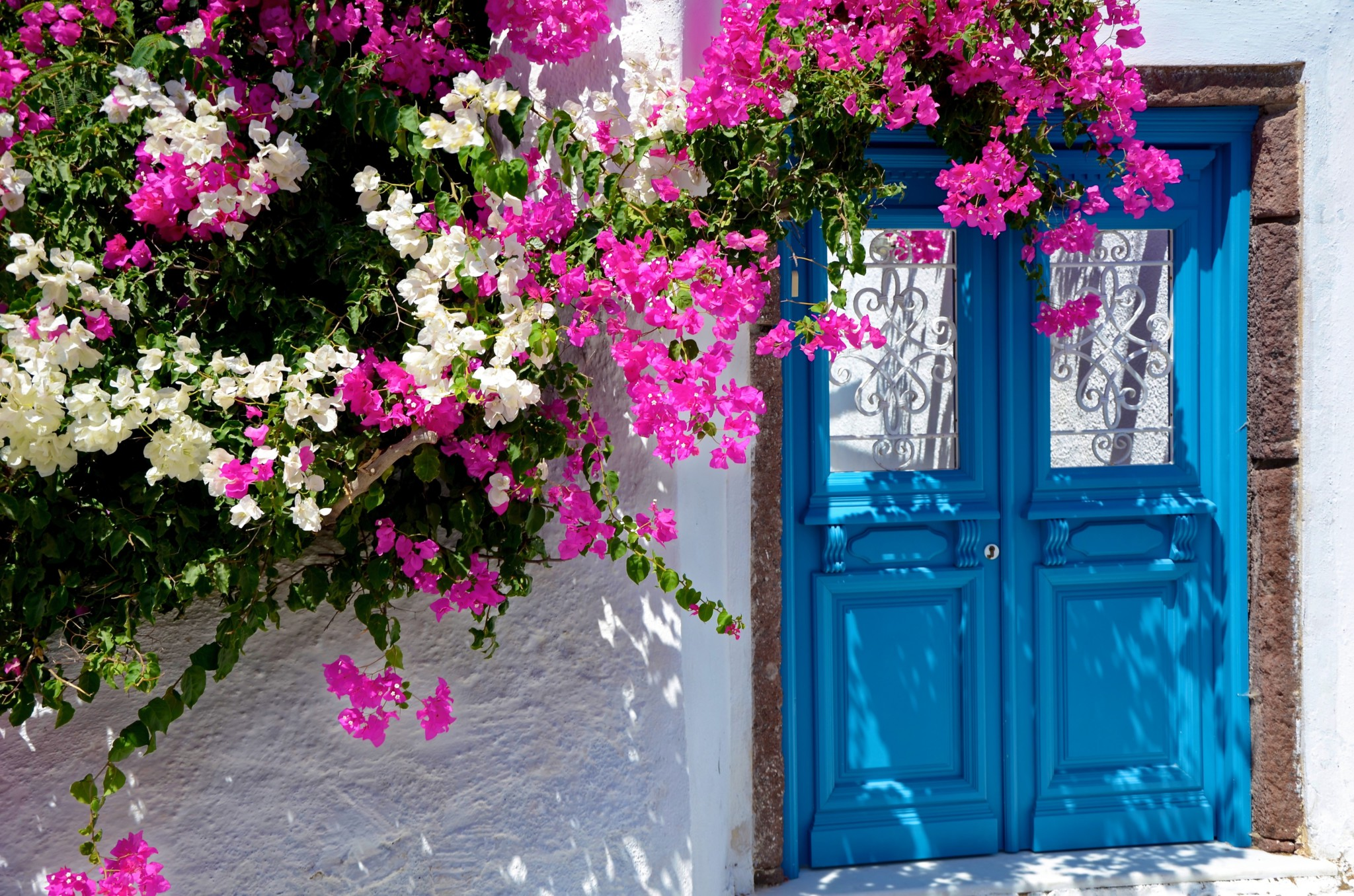 Haustüre mit Bouganvilla - Santorin