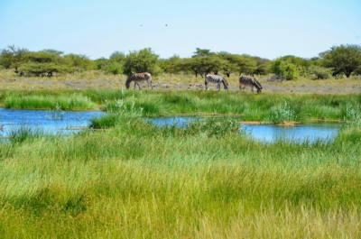 Fort Namutomi - Etosha Nationalpark