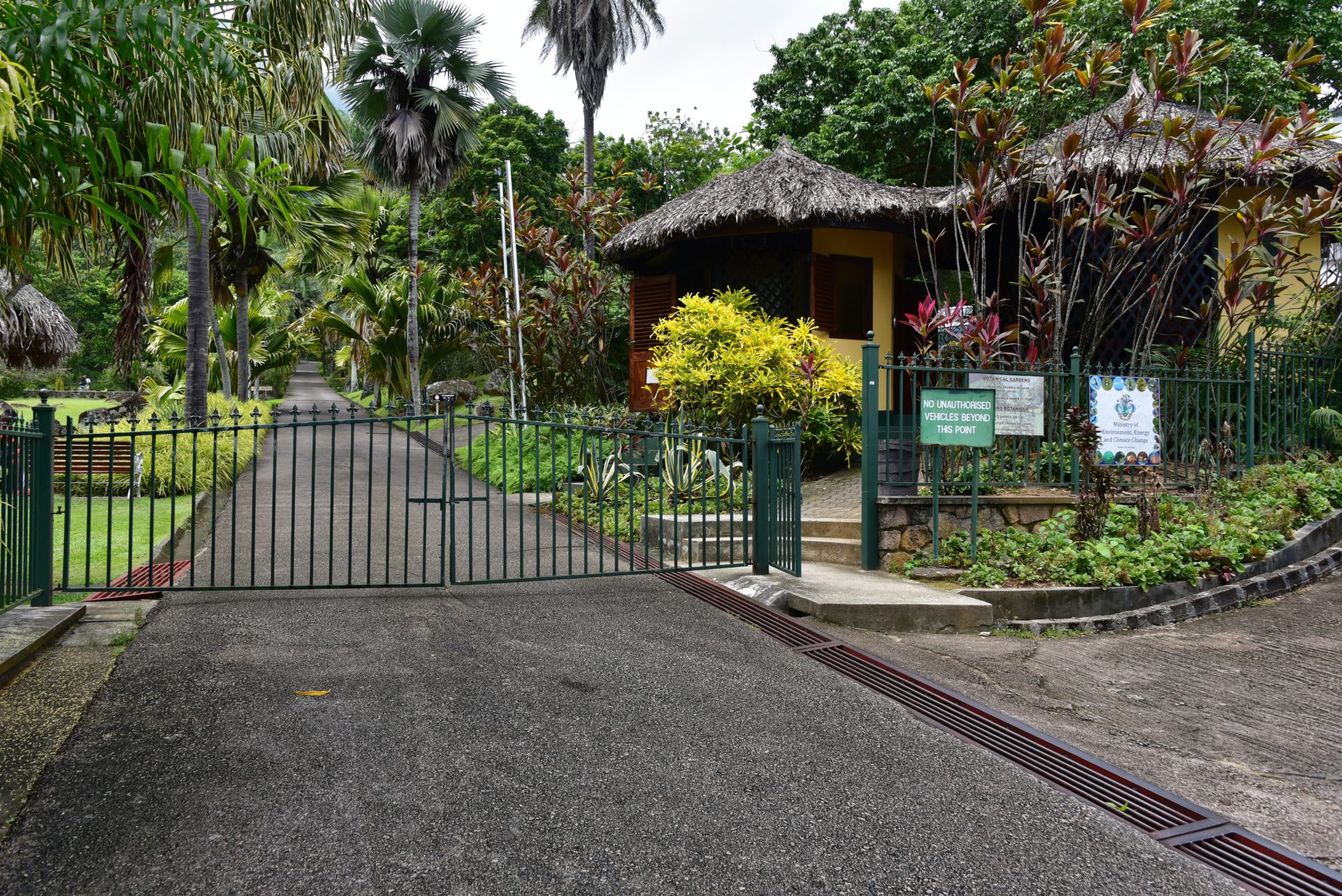 Botanical Gardens - Victoria - Mahe