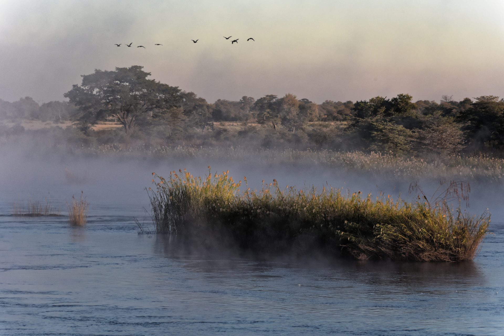 Cubango River - RIVERDANCE LODGE - Namibia