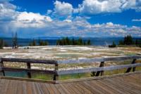 Geysir - Yellowstone NP - Wyoming