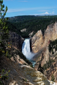 Lower Falls in the Grand Canyon - Yellowstone NP - Wyoming