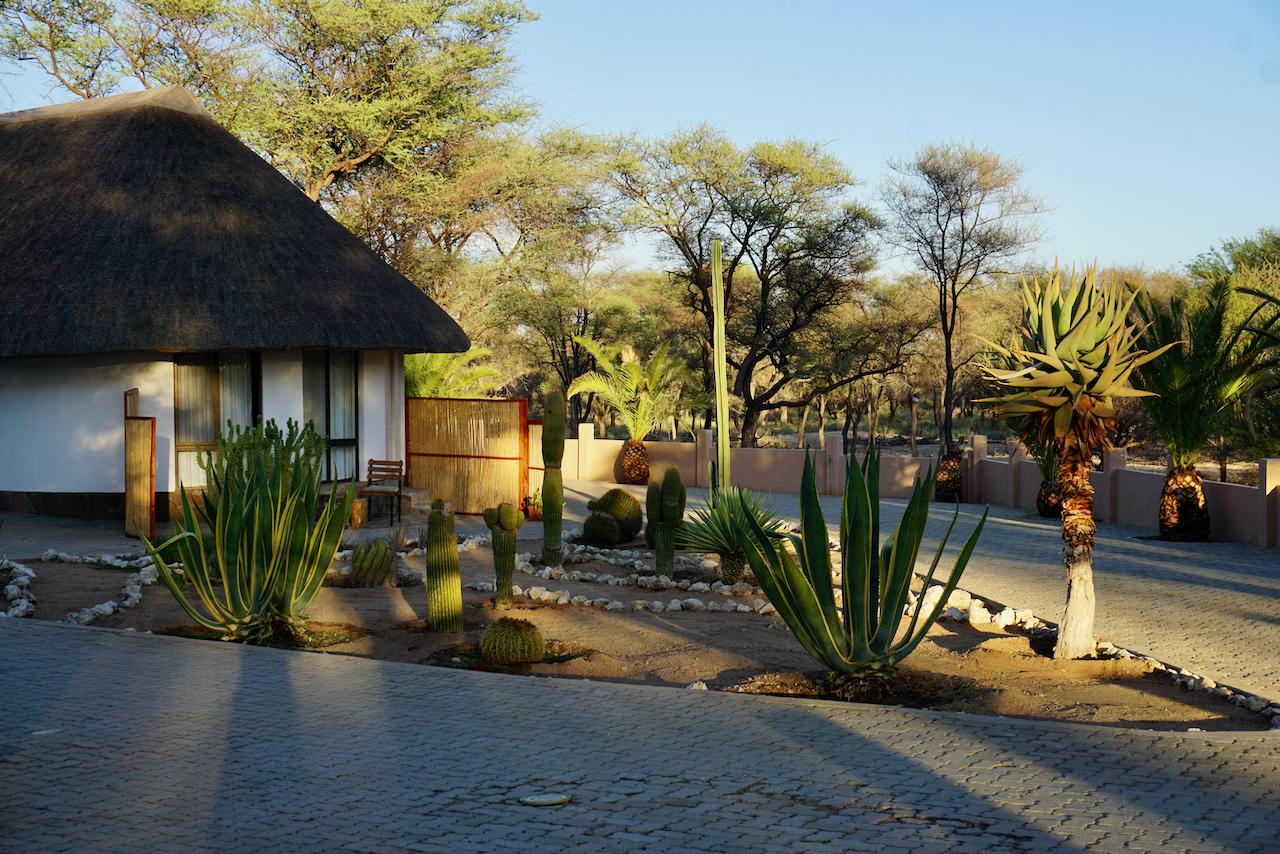 Onduruquea Lodge - Omaruru